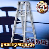 Ladders for Wrestling Action Figures