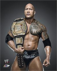 WWE Full Color 8 by 10 Photos (2013)